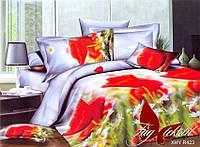 Комплект постельного белья ТМ TAG Евро, постельное белье Евро XHY423