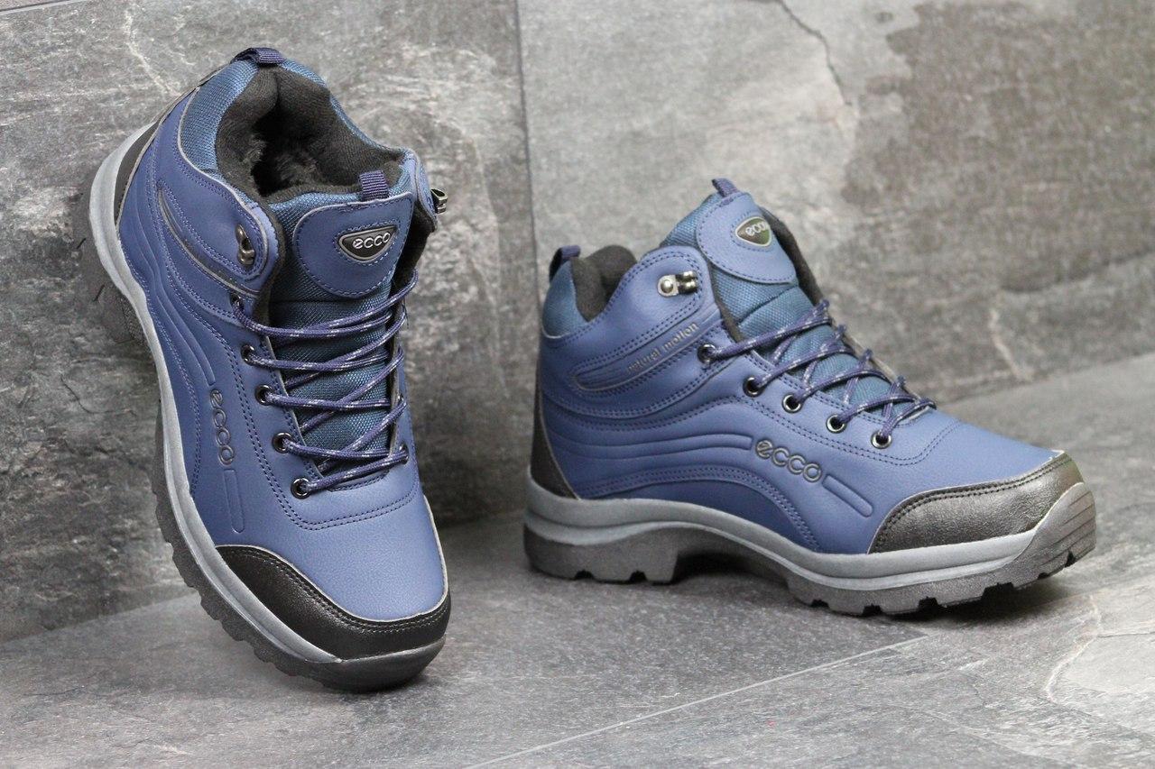 Ботинки  мужские Ecco (синие), ТОП-реплика