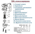 Силовий елемент ТРВ Alco controls XB 1019 HW 100-1B (803043), фото 3