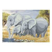 """Схема для вышивки бисером Т-0181 """"Слоны"""""""