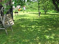 Покос травы. 2229113 Покосим траву недорого! Стрижка газона в Киеве цена.