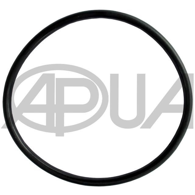 Оринг корпуса малого фильтра Agroplast | AP17OF AGROPLAST