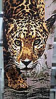 Полотенце пляжное Тигр - 1