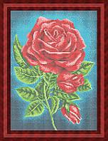 Схема для полной вышивки бисером - Алые розы, Арт. НБп3-47