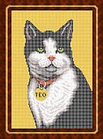 Схема для полной вышивки бисером - Кот с медальоном, Арт. ЖБп4-7-1