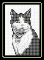 Схема для полной вышивки бисером - Кот с медальоном, Арт. ЖБп4-7-2