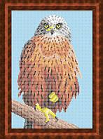 Схема для полной вышивки бисером - Птица - Орел, Арт. ЖБп4-13