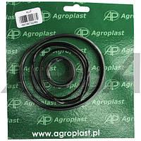 Ремкомплект малого фильтра Agroplast | KUF AGROPLAST