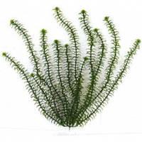 Растение Tetra DecoArt Plantastics Anacharis, 11-15 см