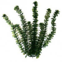 Растение Tetra DecoArt Plantastics Cabomba, 30 см