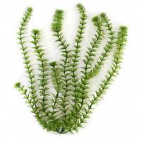 Tetra DecoArt Plantastics (Ambulia) 44-47 см