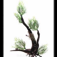 Растение на корне пластик Aquael В3002 28х10х18 см