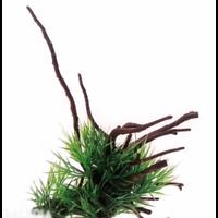 Растение на корне Aquael В2207 24х12х16 см
