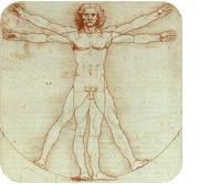 12 систем организма и их функции. О. А. Бутакова
