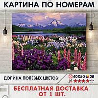 """Картина по номерам """"Долина полевых цветов"""" 40х50 см"""