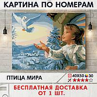 """Картина по номерам """"Птица мира"""" 40х50 см"""