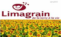 Семена подсолнечника Лимагрейн/Limagrain