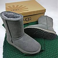 Зимние женские сапоги UGG Classic Short (короткие угги австралия) серые