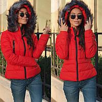 Куртка бабочка зима в категории куртки женские в Украине. Сравнить ... 87f21f778f1d4