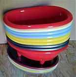 Ванночка (подставка) для губок пластиковая., фото 4