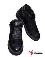 Мужские зимние кожаные ботинки, Cevivo, синие, прошитые