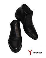 Мужские зимние кожаные ботинки, Cevivo, чорные, две змейки