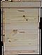 Вулик Багатокорпусний під рамку типу «Дадан 300 мм» (2 корпуси, 12-ти рамковий), фото 2