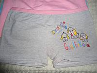 Трусики -шортики (девочка) L