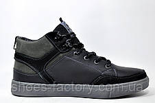 Кожаные ботинки Splinter, зимние с мехом, фото 3