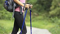Палки Кийки Скандинавская ходьба Nordic Walking