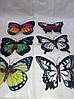 декор для стен 3D бабочки