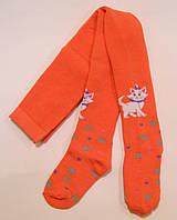 Колготки махровые с кошечкой морковного цвета для девочек