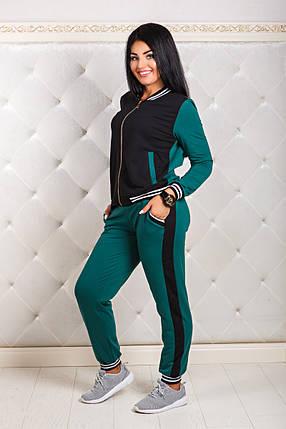 ДТ1163 Спортивный костюм размеры 50-56, фото 2