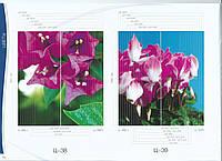 Цветы (фотопечать)