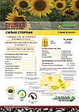 Семена подсолнечника Фушия КЛ под Еролайтинг, фото 2