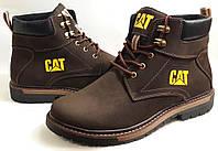 Мужские Зимние Кожаные ботинки CAT 119  brown Польша
