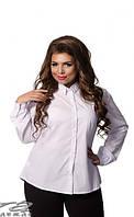 Блуза женская в интернет-магазине недорого Украина Россия Минова Фабрика моды поставщик ( р. 52-56 )