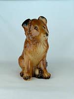 Копилка собака породы Колли, щенок, сувенир собака оптом