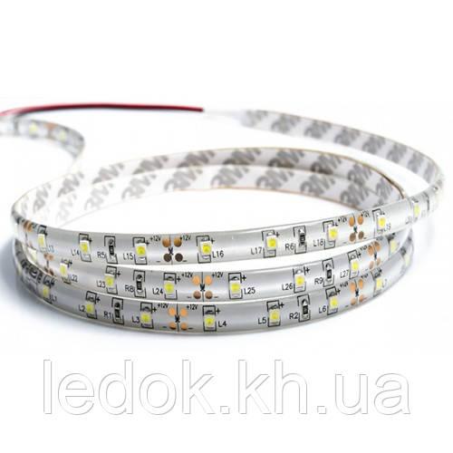 Светодиодная лента smd3528 МОТОКО (А-класс) 60led/m Белый