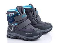 Термо ботинки для мальчиков оптом. B1803 Grey (8пар 27-32