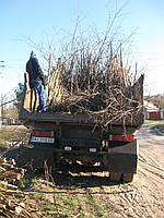 Вывоз мусора Киев -Вывоз строительного мусора самосвалом.
