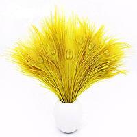 Перья Жар-птицы Павлина декоративные (Перо) Желтые 25-30 см 5 шт