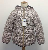 Куртка итальянская демисезонная для девочки Bimbus принт Леопард