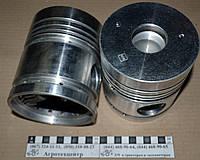 Поршень Д-240 (5к) 50-1004021А2 (С)