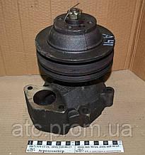 Насос водяной А-41 41-13С3-1