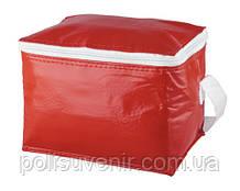 Квадратна сумка холодильник з ПВХ