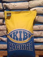 Семена подсолнечника Аракар (евро-лайтинг)