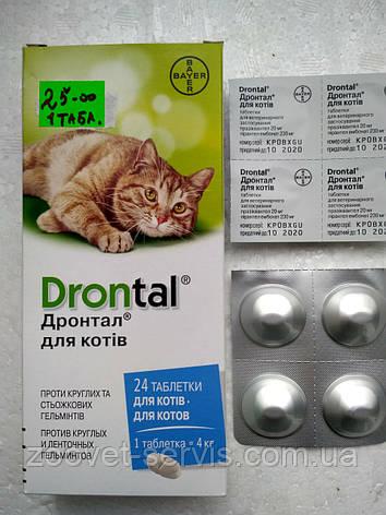 Дронтал таблетки от глистов для котов, фото 2