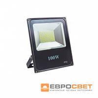 Прожектор EVRO LIGHT ES-100-01 220-240V 6400K 5500Lm SMD