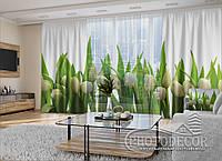 """3D - Фото Шторы и тюль """"Белые тюльпаны"""" 2,5м*5,9м (карниз 4,9м)"""